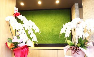 町田エブリー歯科photo